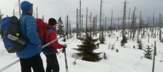 Šumavský hřeben na sněžnicích