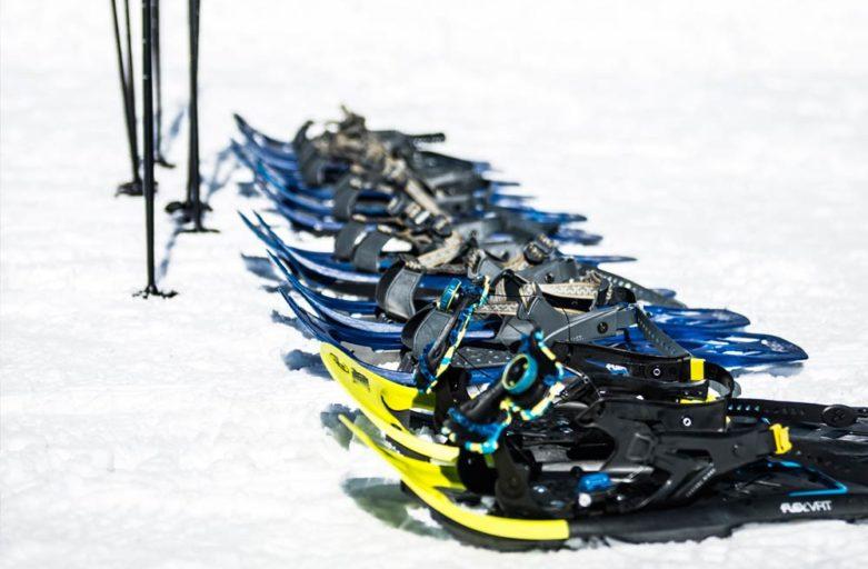 Sněžnicový kurz Novohradské hory
